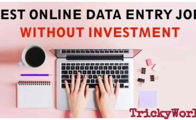 Online Data Entry Jobs Without Investment.